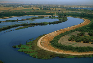 Sacramento-San Joaquin River Delta. Photo courtesy San Diego Water Authority.