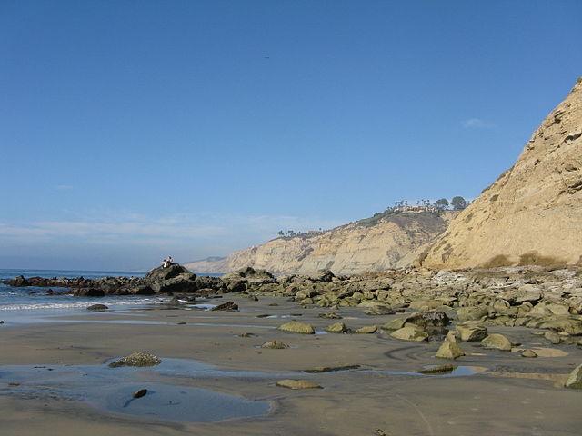 Black's Beach in La Jolla. Photo credit: Wikipedia Commons.