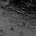 Raindrops in a puddle of water