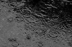 Raindrops in a puddle of water. Photo via Wikipedia Commons.
