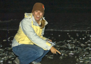 A Birch Aquarium guide points to spawning grunion in La Jolla. Photo courtesy Birch Aquarium at Scripps