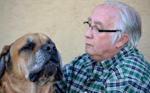 Rodney Bates and Tank, his English Mastiff. Photo courtesy County News Center