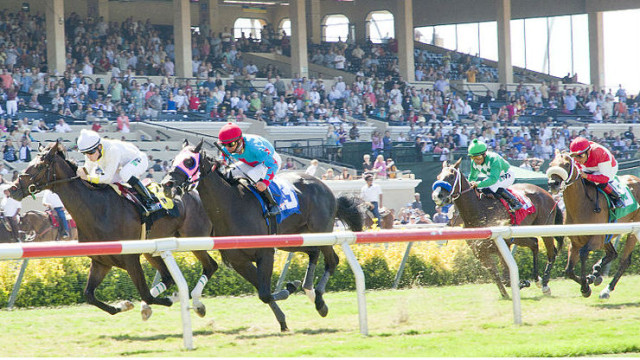 Horse racing at Del Mar in 2011. Photo by Dirk Hansen via Wikimedia Commons