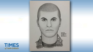 North Park suspect composite sketch