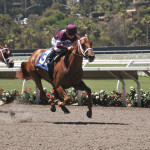 Horse racing at Del Mar