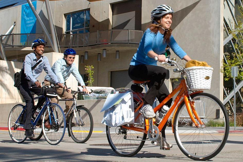 Ninja Mountain Bike Performance | Skills Clinics, Camps ...