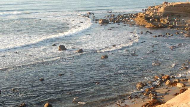 The tidal pools at Cabrillo National Monument. Photo by Billy Hathorn via Wikimedia Commons