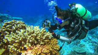 SDSU graduate student Yan Wei Lim exploring coral reefs in the southern Line Islands. Courtesy SDSU