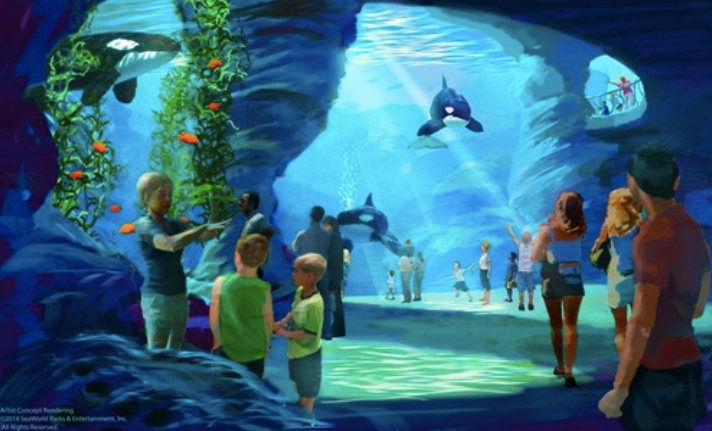 Artist's conception of SeaWorld's new killer whale home. Image via seaworldentertainment.com