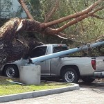 Tree crash on top of four trucks at a McDonald's in Rancho San Diego