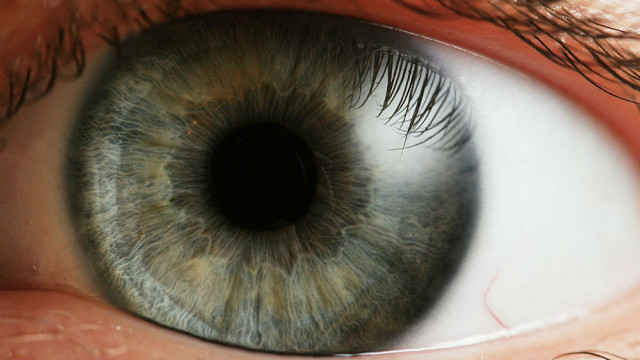 A human eye. Photo by Petr Novák, Wikipedia