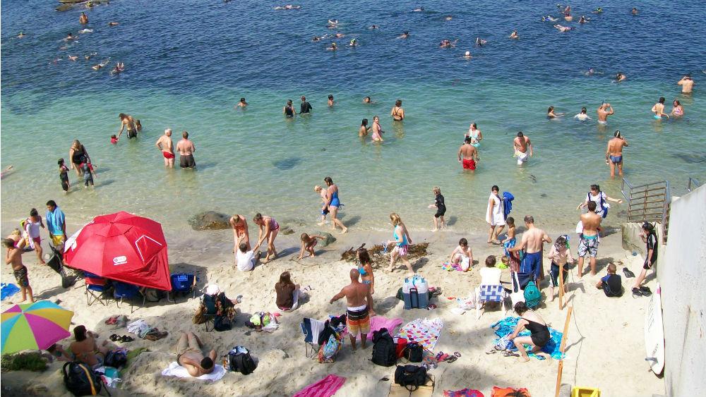 A crowded tidal pool at La Jolla Cove. Photo by Charles Edward via Wikimedia Commons