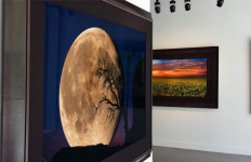 Interior of Peter Lik's new gallery at Fashion Valley Mall.