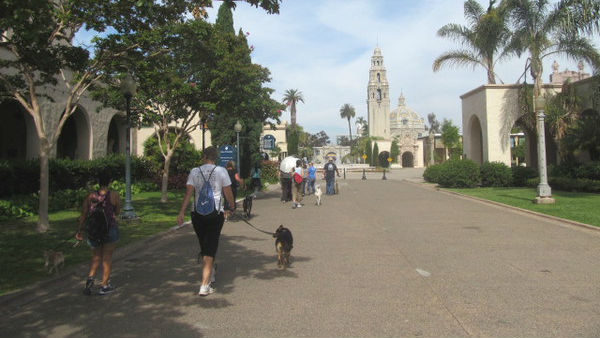 A Wag & Walk event in Balboa Park. Photo courtesy San Diego Humane Society and SPCA