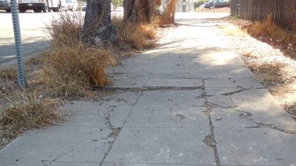 Some of the hazards on San Diego sidewalks surveyors have found in recent months. It could amount to a $2-billion backlog. Photo credit: City of San Diego.
