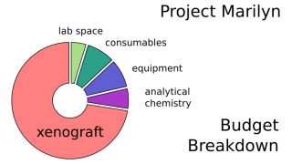 A breakdown of how Project Marilyn's funds will be spent.