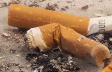 Cigarette butts. Photo by Edinaldo do Espirito Santo via Wikimedia Commons