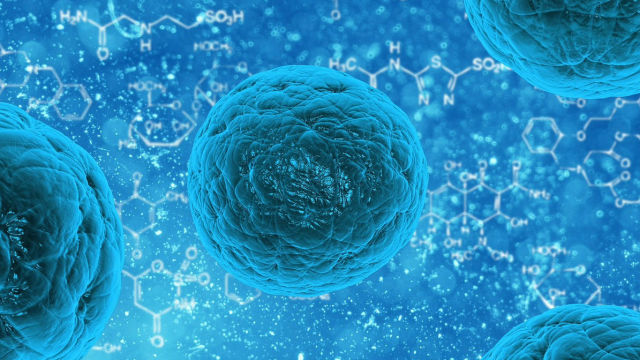 stem cell research a new breakthrough in the field of medicine Read about today's stem cell research 2018 — in work that brings researchers closer to the goal of precision medicine new research shows how.