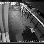 Horton Plaza brawl