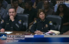 Shelly Zimmerman Public Safety Committee Meeting
