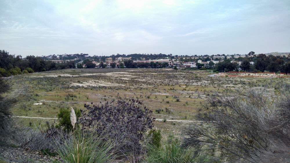 One Paseo site looking northeast toward Del Mar Heights Town Center. Photo by Chris Jennewein