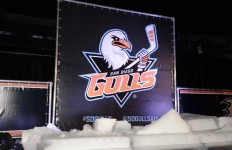 Thousands of spectators cheered as the name of San Diego's new hockey team was unveiled.