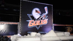Thousands of spectators cheered as the name of San Diego's new hockey team was unveiled. Photo by Chris Stone