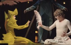 """Varekai"" by Cirque du Soleil. Image from video"