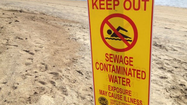 beach closed sewage