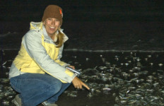 A Birch Aquarium guide points to spawning grunion in La Jolla. Photo courtesy Birch Aquarium at Scripps