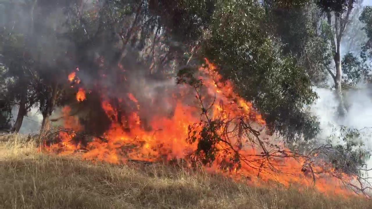 Heartland Fire & Rescue Exinguishes Small Bonita Brush