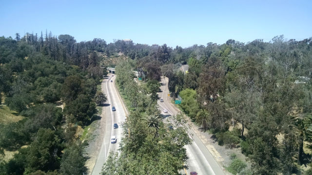 The Cabrillo Freeway in Balboa Park. Photo by Chris Jennewein