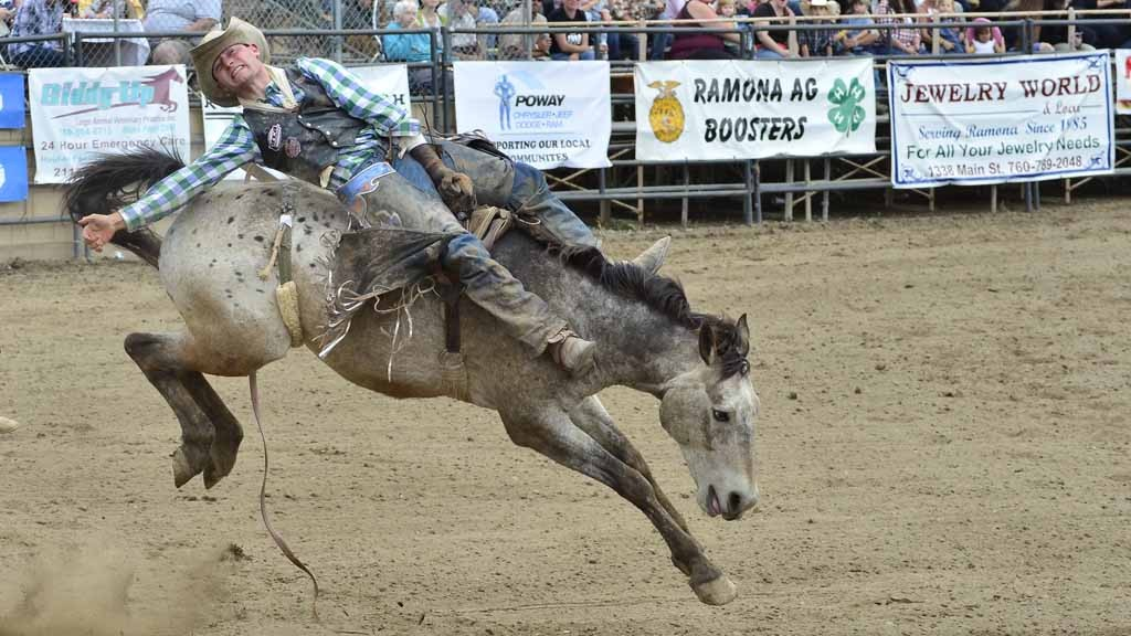Ride Em Ramona Ketscher Top Cowboy At 35th Annual Rodeo