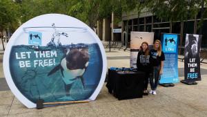 Anti-SeaWorld virtual reality booth was set up Wednesday in downtown San Diego. Image via PETA