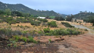 "The 98-acre ""Lazy A"" horse ranch site on Alpine Boulevard would be the high school venue. Photo by Ken Stone"