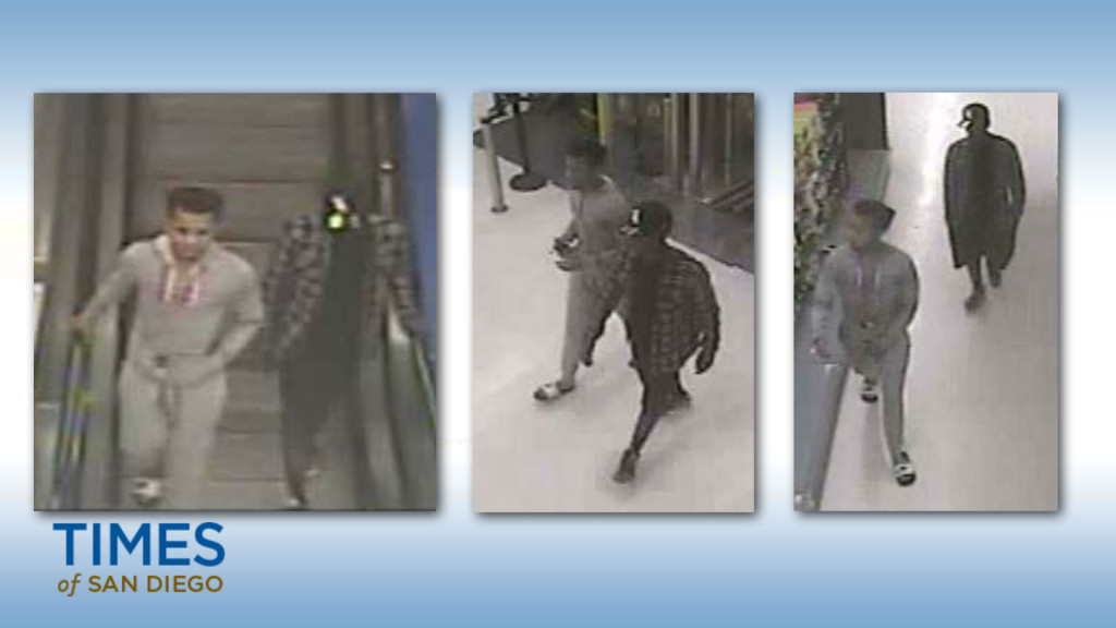 Police say these are the suspects in the mugging of a 70-year-old woman in Rolando. Photo courtesy of Crime Stoppers
