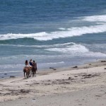 At Border Field State Park just north of the U.S.-Mexico border, horseback riding is allowed.