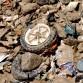 Plastic trash from the Rijuana River