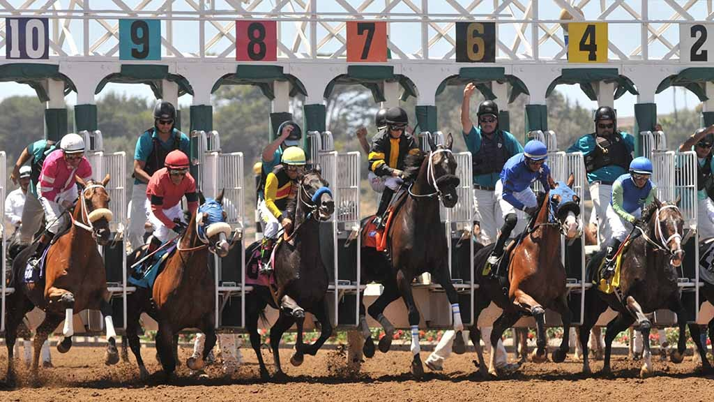 Horses spring from the gate at the start of the first race on opening day of the 2015 Del Mar racing season.Chris Stone photo