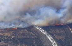 Traffic back up on I-15 behind the fast-moving North Fire. Courtesy San Bernardino Fire Department