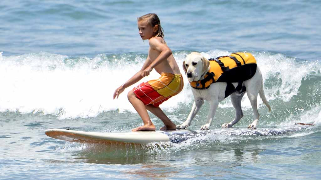 Finn and his dog Haole compete in the tandem competition. Photo by Chris Stone