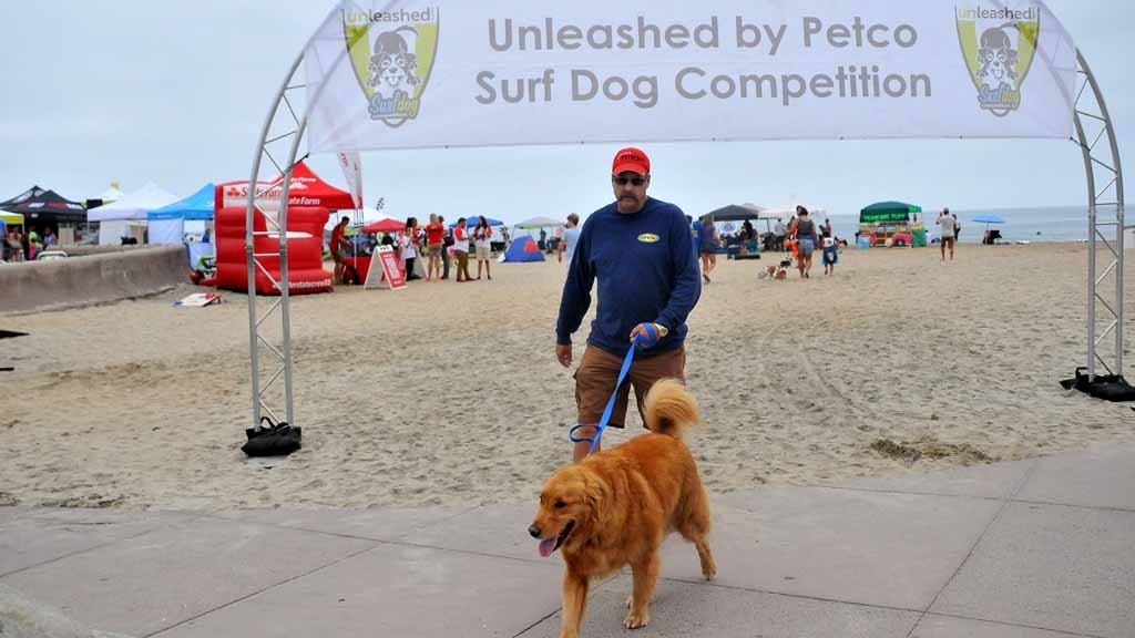 Ultimate Trust' Makes Everyday Fido a Surf Dog - Times of