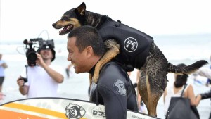 Abbie gets a ride back to shore with owner Mike Uy. Photo by Chris Stone