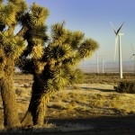 Windmills in a California desert