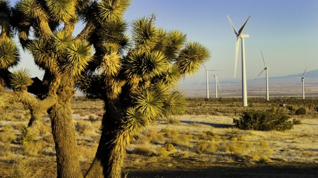 Windmills in a California desert. Courtesy SDG&E