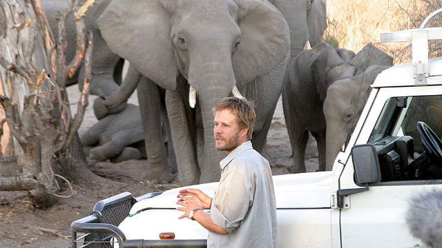 Michael Chase with elephants in southern Africa. Courtesy San Diego Zoo blog