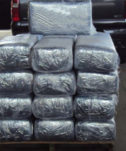 Bundles of marijuana with a street value of $750,000 were seized at the Border Patrol's I-15 checkpoint. Courtesy Border Patrol
