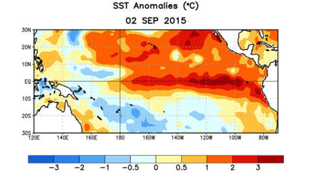 The latest variation in sea surface temperatures from normal. Courtesy NOAA