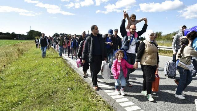 Syrian refugees walk along a highway in Denmark. REUTERS/Bax Lindhardt/Scanpix Denmark