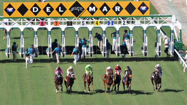 Horses come out of the gate in the third race on the turf on 2015 Opening Day in Del Mar. Photo by Chris Stone